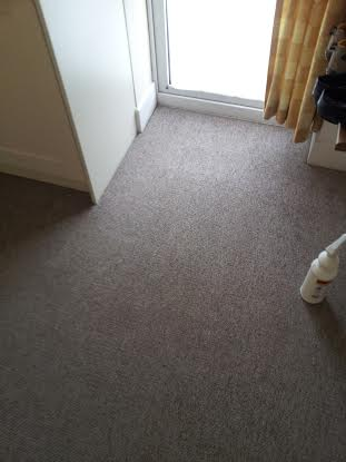 after carpet clean in Ferndown
