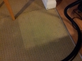 Sample area of carpet clean shown to customer
